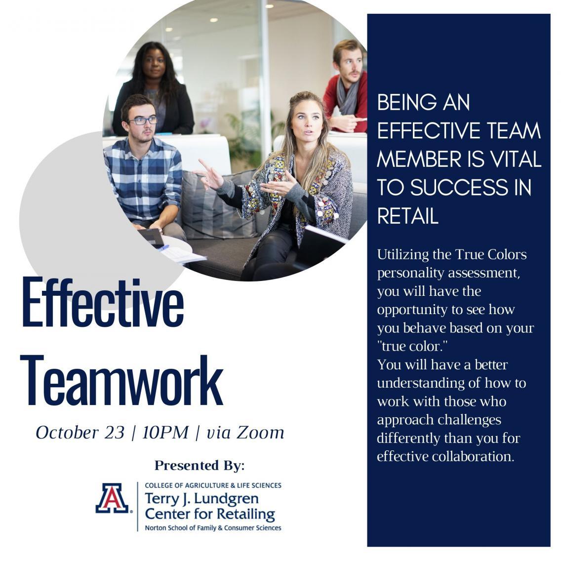 Effective Teamwork Virtual Workshop Flyer